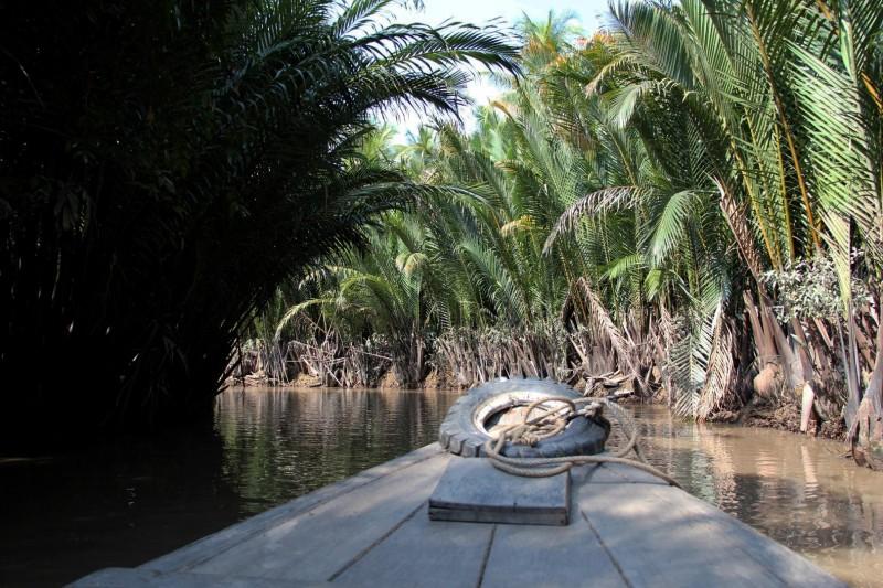 Amazonas-ähnliche Flussfahrt