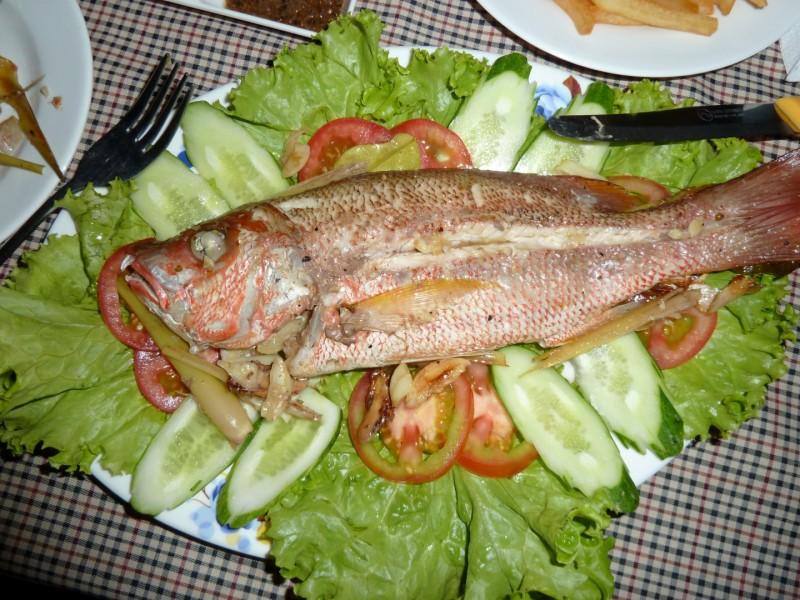 Red Snapper - der beste Fisch, den sogar Fabian gern hatte