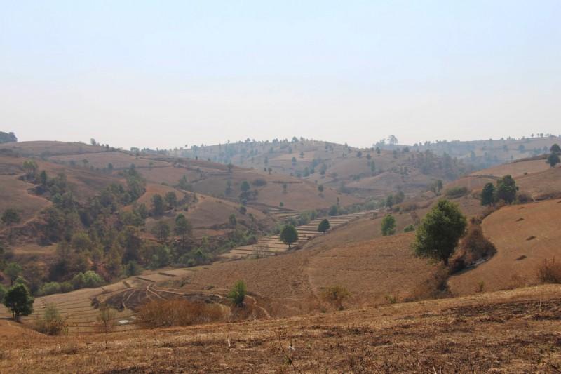 Die Landschaft war aufgrund der Trockenzeit sehr dürr und trocken.