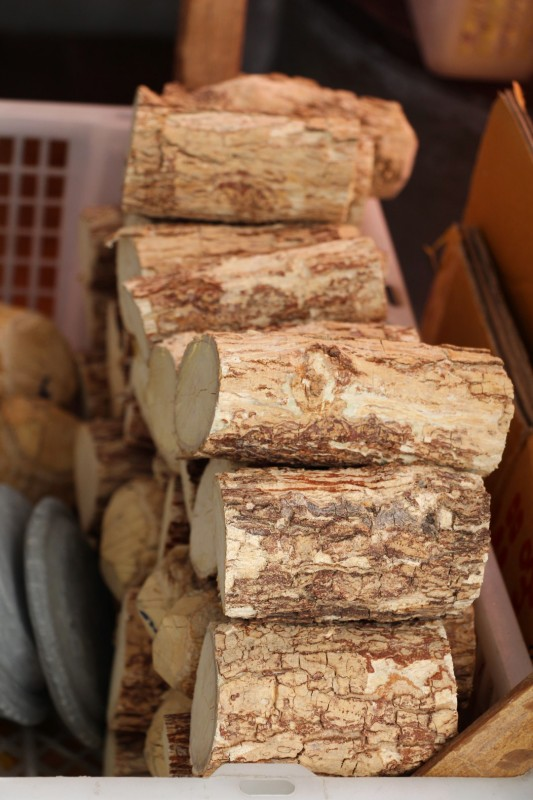 Aus diesemmHolz und Wasser wird die berühmte Sonnencreme der Burmesen hergestellt.