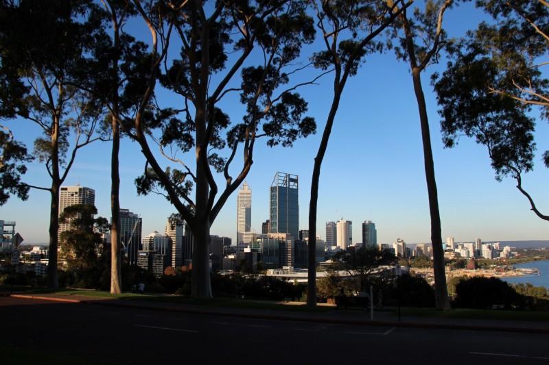 Blick auf die Skyline von Perth vom Kings Park aus.