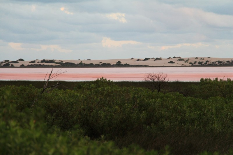 Pink Lake bei Port Gregory