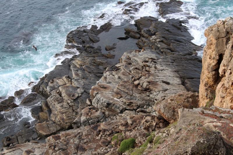 Kein normaler Felsen, beim genauerem betrachten seht ihr warum :-)