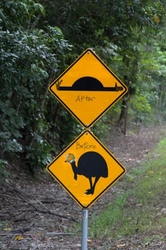 Leider haben wir keine Kasuare gesehen, dafür lustige Schilder