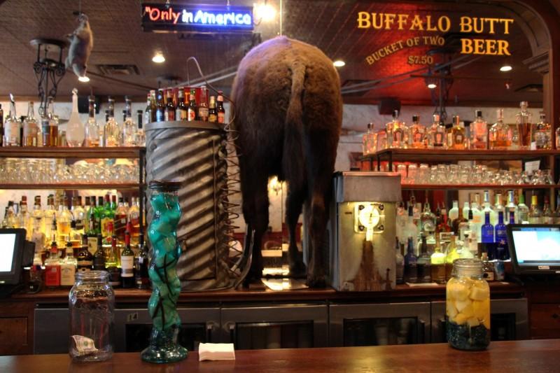 Gibts auch nur in Texas: Ein Buffalo Butt als Bar-Deko