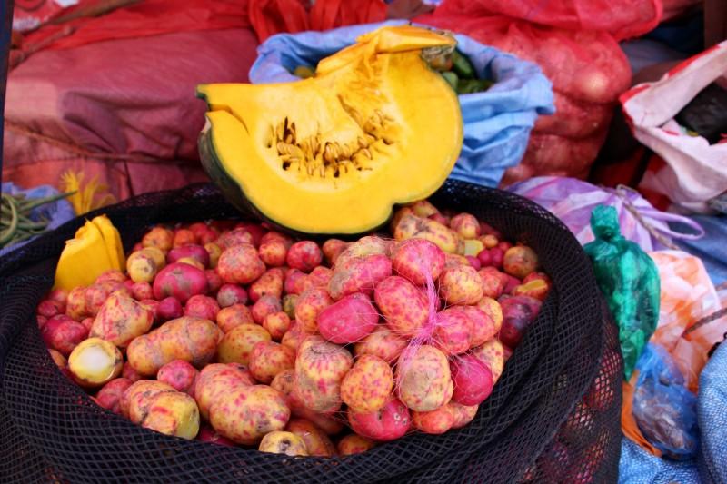 In La Paz gibt es ca. 400 verschiedene Kartoffelarten, in ganz Suedamerika ca. 4000 oder mehr.