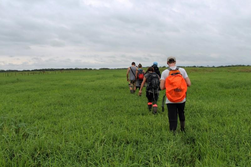 In der Pampas auf der Suche nach der Anakonda-Schlange